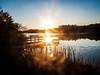 Sunlight Prospertown Lake
