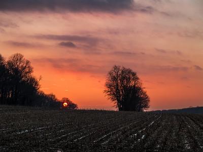 Last Sun Over Field