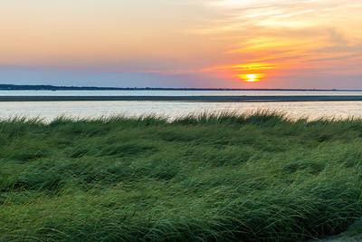 Sea Grass Sunset