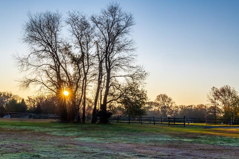 Park Sunrise