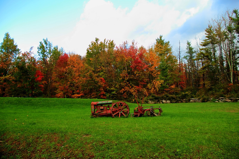 Came across this behind a small business square in Ashokan NY. 10-15-2011