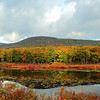 Another angle from the pond. The foothills of the Catskill Mountains in the background!