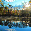 Another shot of the Upper Rondout Creek different location. October 30-2011