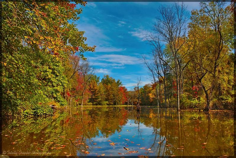 Fall on the Swartekill