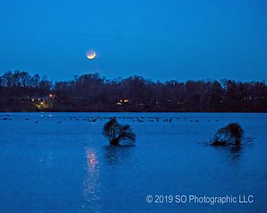Blue Super Blood Moon Over Goshen