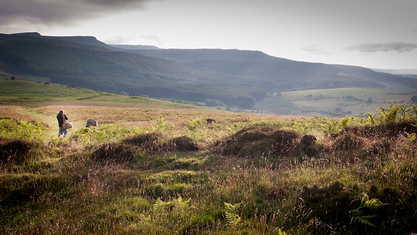 Simonside Hills - the magic mountains of Northumberland