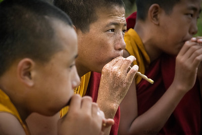 Young monks flute practice, Chimi Lhakhang  monastery, Punaka