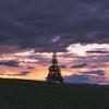 Hokkaido's Christmas Tree