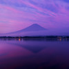 Purple Fuji Sunrise
