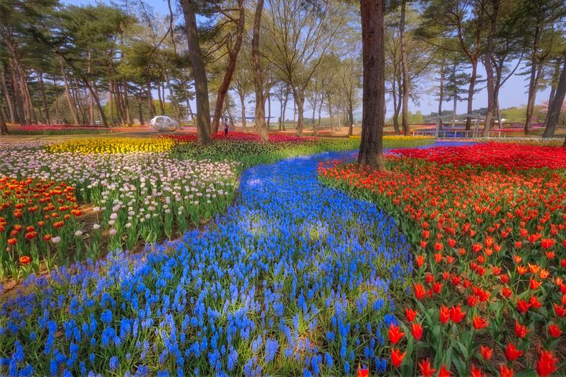 Flower River Bed