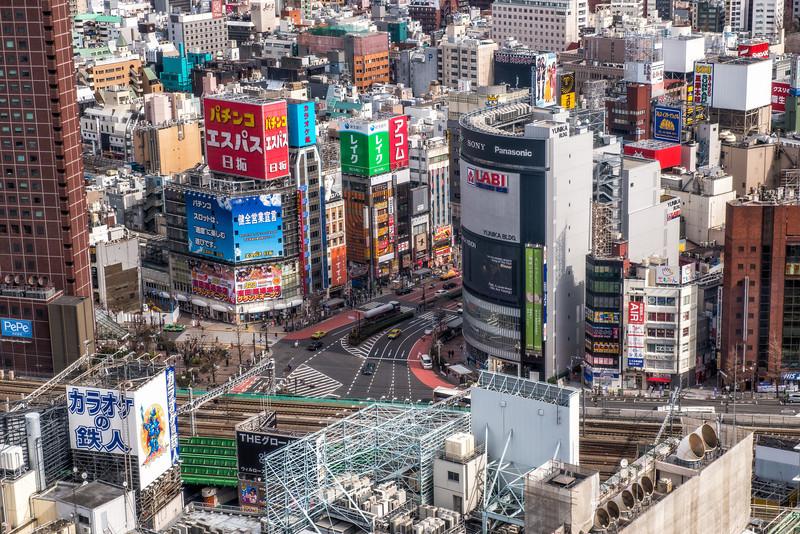 Shinjuku Jungle