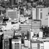City Junge of Tokyo