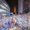 Roppongi Light Up