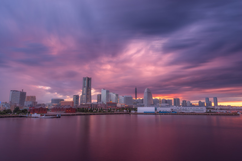 Purple Yokohama