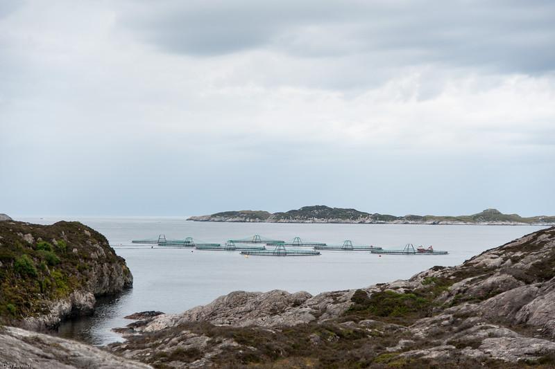 Fiskeoppdrett, Lokøy 2011.