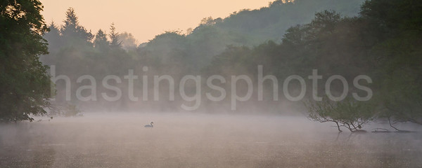 Keg Pool, Etherow Country Park; sunrise