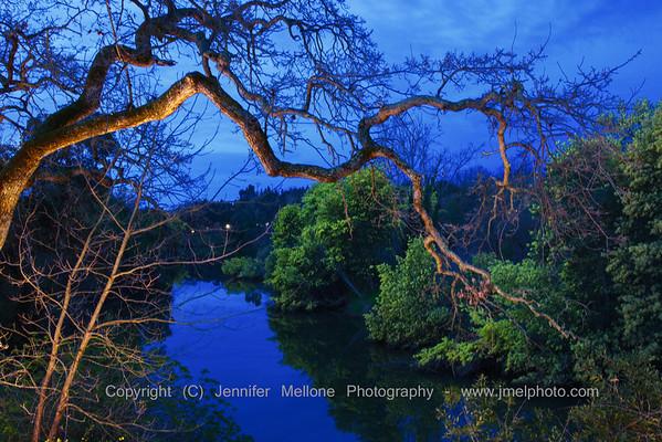 Napa River Dawn