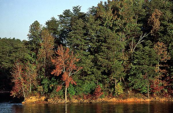 LakeFront Scenery