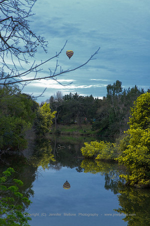 Napa River Balloon - Vertical