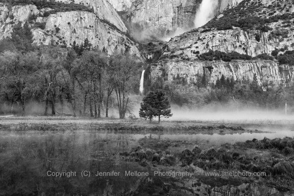 Pre-Sunrise Ground Fog Meadow Yosemite Lower Fall - Black and White