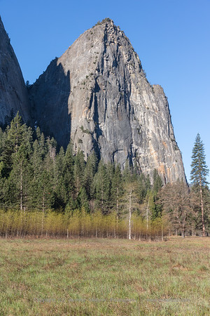 Cathederal Rock and Spring Trees in El Capitan Meadow