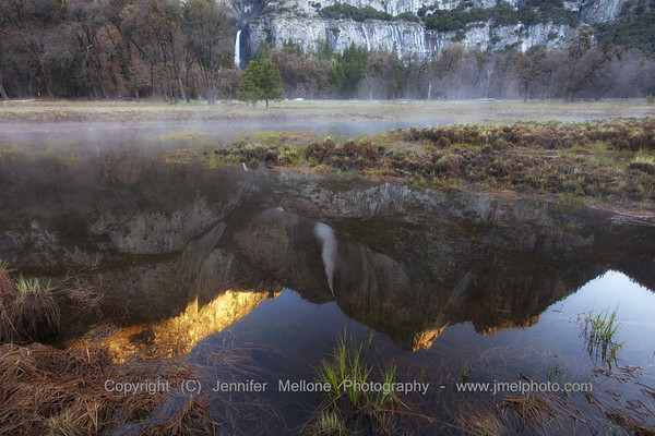 Upper Yosemite Fall Reflection in Meadow with Ground Fog