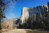 El Cap Bathed in Morning Spring Light