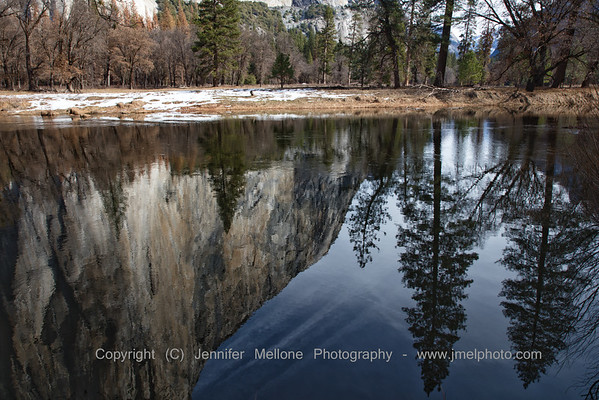 Soft Partial El Capitan Reflection with Two Large Trees