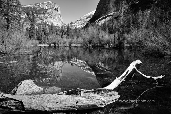 Log and Mirror Lake in Winter - Black and White