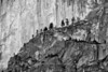 Treetop Slope on Half Dome's Side - Black and White