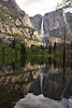 Yosemite Falls Reflection in Flooded Meadow