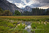 Flooded Meadow Comes Alive at Sunrise with Half Dome Reflection