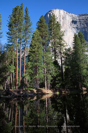 El Capitan and Trees Reflection