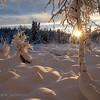 Winter landscape along the Chester Creek Trail, Anchorage, Alaska