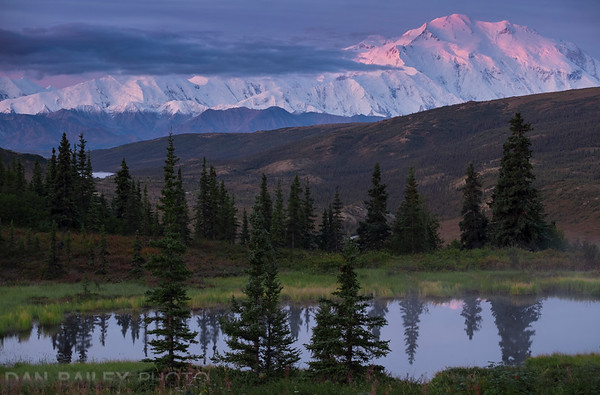 Sunrise on Mt. McKinley, seen from Camp Denali