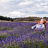 Sunbath in lavender field