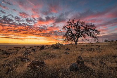 Upper Bidwell Park Sunset