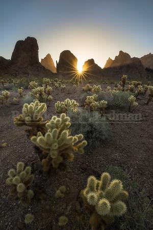 Kofa Mountain Sunrise