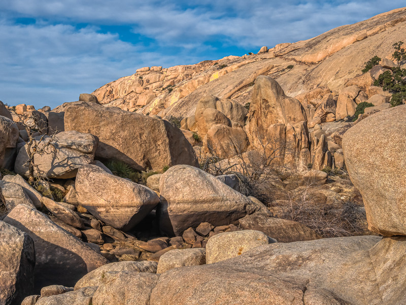A dry year at Barker Dam, Joshua Tree