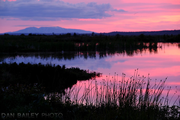 Mt. Susitna and an evening landscape at Potter Marsh.