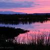 Mt. Susitna and an evening landscape at Potter Marsh.