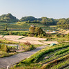 Terraced Rice Fields in Inabuchi, Japan