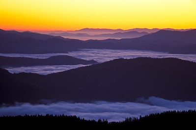 Clingmans Dome In Great Smoky Mountains National Park