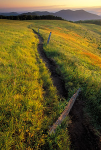 Appalachian Trail-Max Patch Mountain-Pisgah National Forest