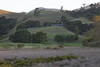 Coromandel, Coromandel Peninsula