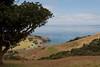 Kiriata Bay, Coromandel Peninsula