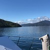 """As this video shows the scenery in """"Marlborough Sounds"""" was pretty stunning!!"""