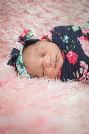 Landa Newborn