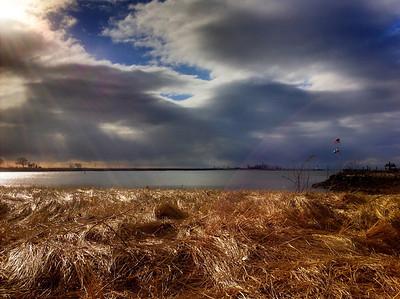 Seabright Beach Sunburst