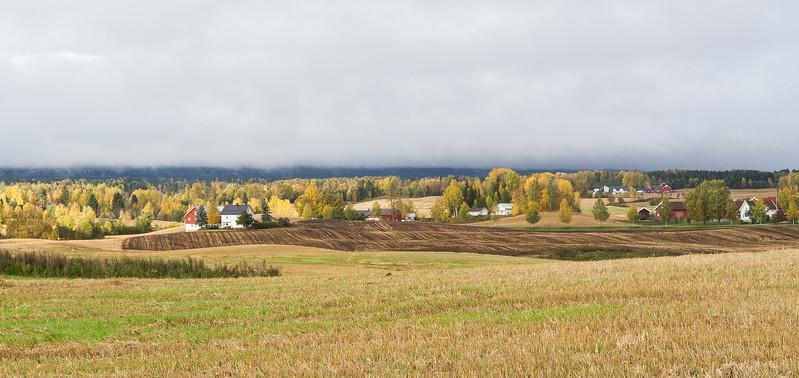 Høst i Vang